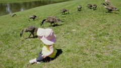 Baby infant girl with goose family 2 Stock Footage