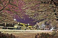 Snow In Night Time - stock photo