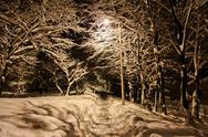 Stock Photo of Snow In Night Time