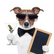 martini dog - stock illustration
