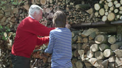 Grandfather and grandson with logs Stock Footage
