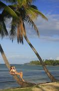 Young woman in bikini laying on leaning palm tree, las galeras beach Stock Photos