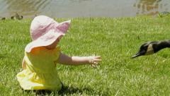 Baby infant girl with goose close up Stock Footage
