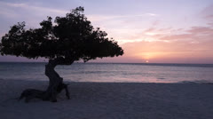 Stock Video Footage of Sunset Aruba