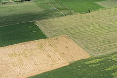 Aerial view of green fields in rural landscape Stock Photos