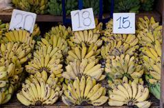 musa sapientum banana in market, thailand - stock photo