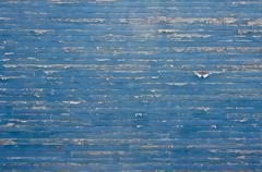 Peeling paint blue wall Stock Photos