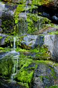 Water trickling over  mossy rocks Stock Photos