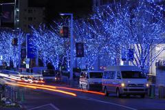 holiday illumination - stock photo