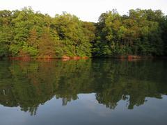 Lake norman shoreline reflection Stock Photos