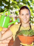 the cultivation of plants in pots - stock photo