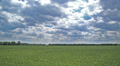 Field with a green grass and the sky in clouds. Landscape Footage