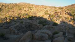 Desert Sunrise Time Lapse in Joshua Tree - stock footage