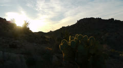 Stock Video Footage of Desert Sunrise Time Lapse in Joshua Tree