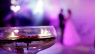 Stock Video Footage of First dance after the wedding ceremony 2