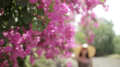 A woman caresses pink flowers 1 Stock Footage