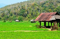 Cottage at Countryside Farm of Thailand - stock photo