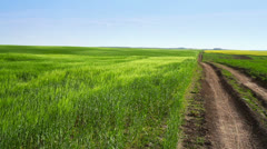 Road and field Stock Footage