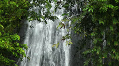 Rainforest Waterfall in El Yunque National Forest, Puerto Rico - Jungle - stock footage