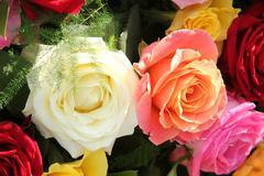 Monivärinen ruusuja kukka-asetelma Kuvituskuvat