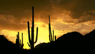 Stock Video Footage of Time Lapse Arizona Desert Silhouettes