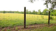 Country Fences Stock Footage