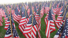 One thousand flags eight Stock Footage