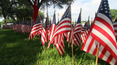 American Flag Decorations: One thousand flags ten Stock Footage