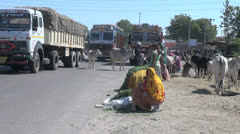 Women sell food for cattle by a road c Stock Footage