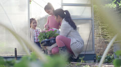 Mother with daughter near greenhouse Stock Footage