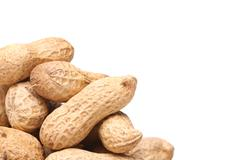 white background and peanuts left - stock photo
