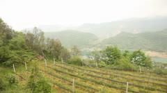 Lake panorama, south tyrol, italy Stock Footage
