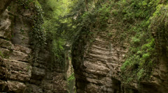 Canyon with River Stock Footage