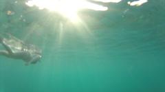 Swimmer follow in sunlight 50 Stock Footage