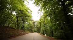 POV Driving In Forest - stock footage