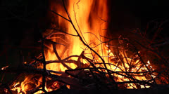 Bonfire at night - stock footage