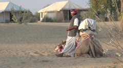 India Rajasthan Manvar camel takes a rest with leaning driver  Stock Footage