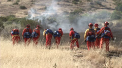 Prisoner Firefighters Cutting Brush - stock footage