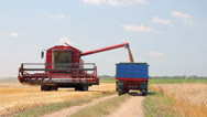 Stock Video Footage of Combine harvester unloading wheat
