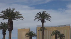 Mandalay Bay resort with palm tree by day, Las Vegas Strip, Nevada, USA, America Stock Footage