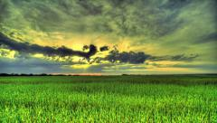 Morning In A Wheat Field. HDR Time Lapse - stock footage