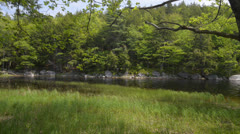 Lake in Forest - stock footage