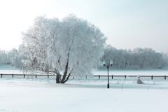 icy winter quay - stock photo