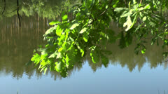 View of the river Stock Footage