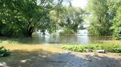 Rhine river flood Stock Footage