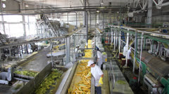 Stock Video Footage of People at work in Food Industry