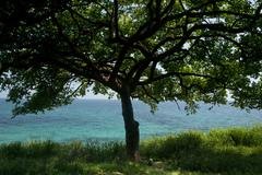 las perlas archipelago - stock photo