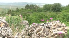 Crimean mountains Stock Footage