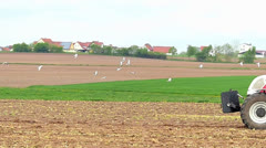 Slow Motion Seagull flying at field Sow Tractor passing Stock Footage