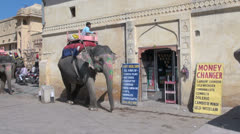India Rajasthan Amber elephant with howdah passes sign Stock Footage